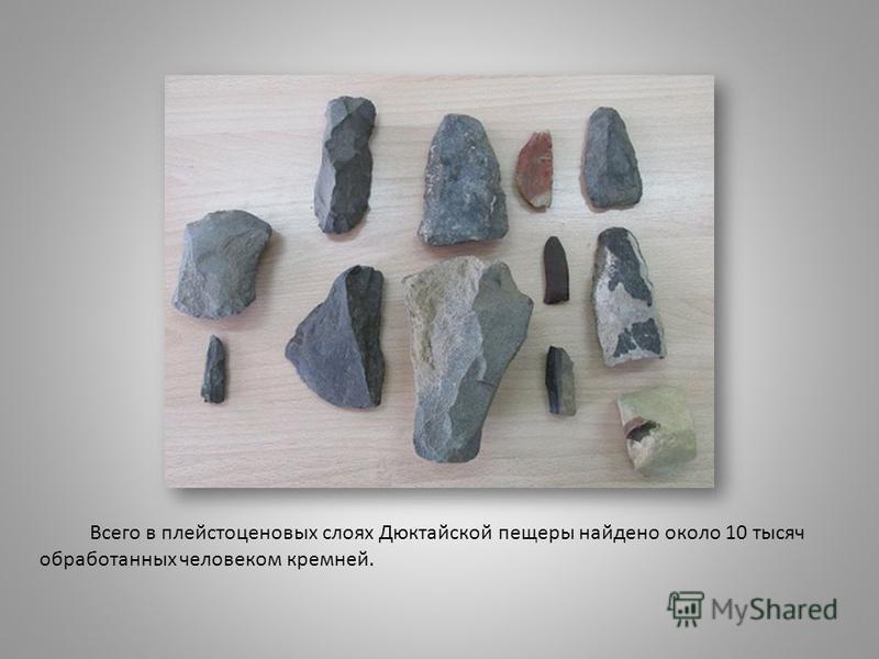 Всего в плейстоценовых слоях Дюктайской пещеры найдено около 10 тысяч обработанных человеком кремней.