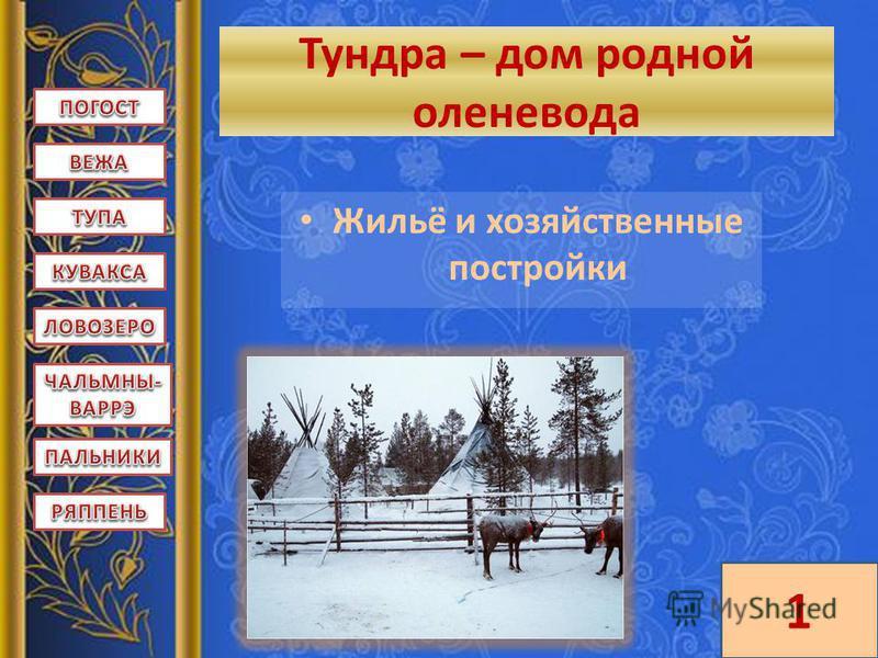 Тундра – дом родной оленевода Жильё и хозяйственные постройки 1