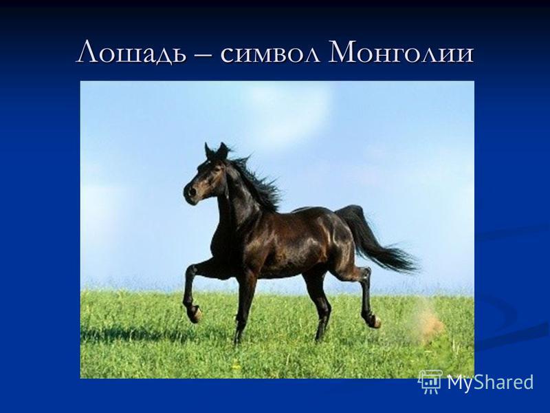 Лошадь – символ Монголии