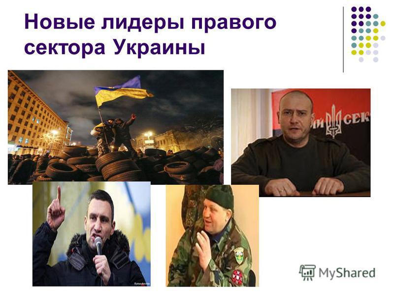 Новые лидеры правого сектора Украины