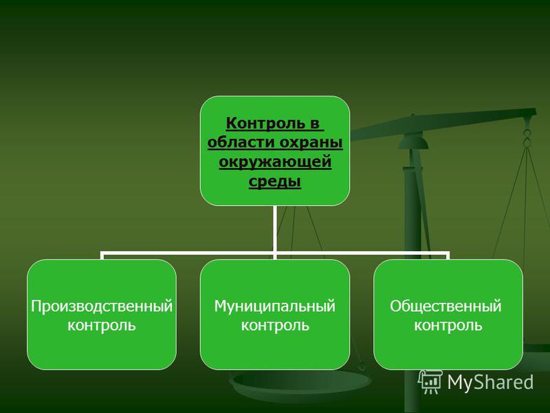 Контроль в области охраны окружающей среды Производственный контроль Муниципальный контроль Общественный контроль