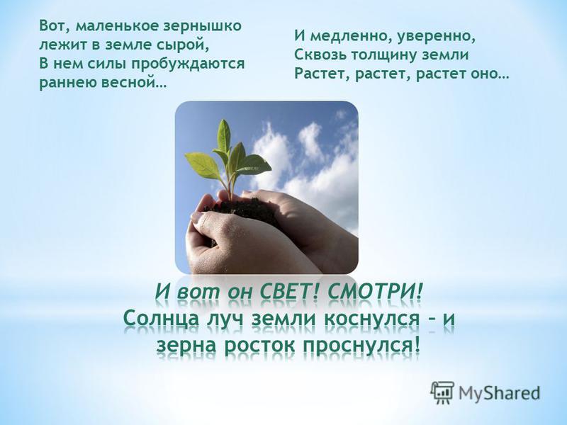Вот, маленькое зернышко лежит в земле сырой, В нем силы пробуждаются раннею весной… И медленно, уверенно, Сквозь толщину земли Растет, растет, растет оно…