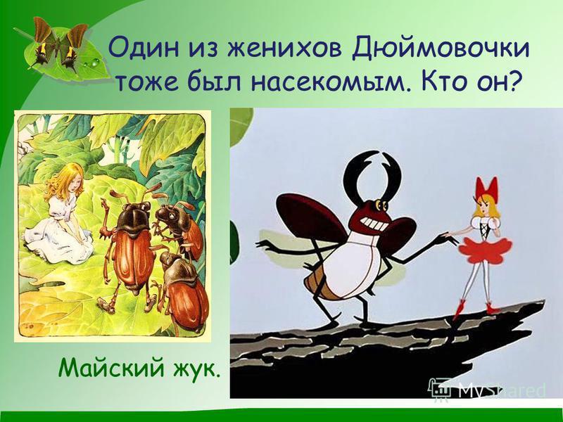 Один из женихов Дюймовочки тоже был насекомым. Кто он? Майский жук.