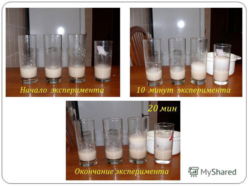 Начало эксперимента 10 минут эксперимента Окончание эксперимента 20 мин