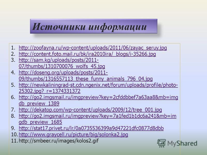 Источники информации 1.http://zoofayna.ru/wp-content/uploads/2011/06/zayac_seruy.jpghttp://zoofayna.ru/wp-content/uploads/2011/06/zayac_seruy.jpg 2.http://content.foto.mail.ru/bk/ira2010ira/_blogs/i-35266.jpghttp://content.foto.mail.ru/bk/ira2010ira/