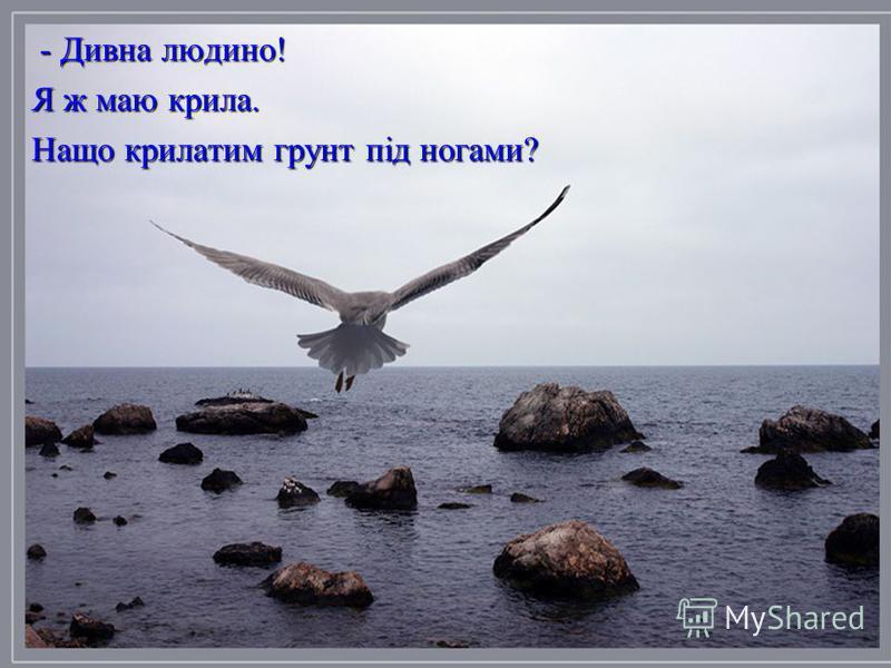 - Дивна людино! - Дивна людино! Я ж маю крила. Нащо крилатим грунт під ногами?