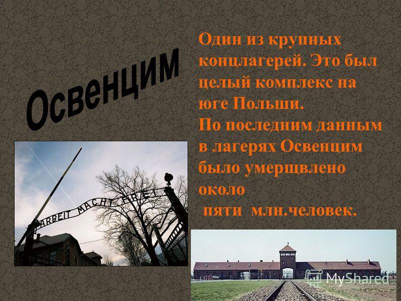 Один из крупных концлагерей. Это был целый комплекс на юге Польши. По последним данным в лагерях Освенцим было умерщвлено около пяти млн.человек.