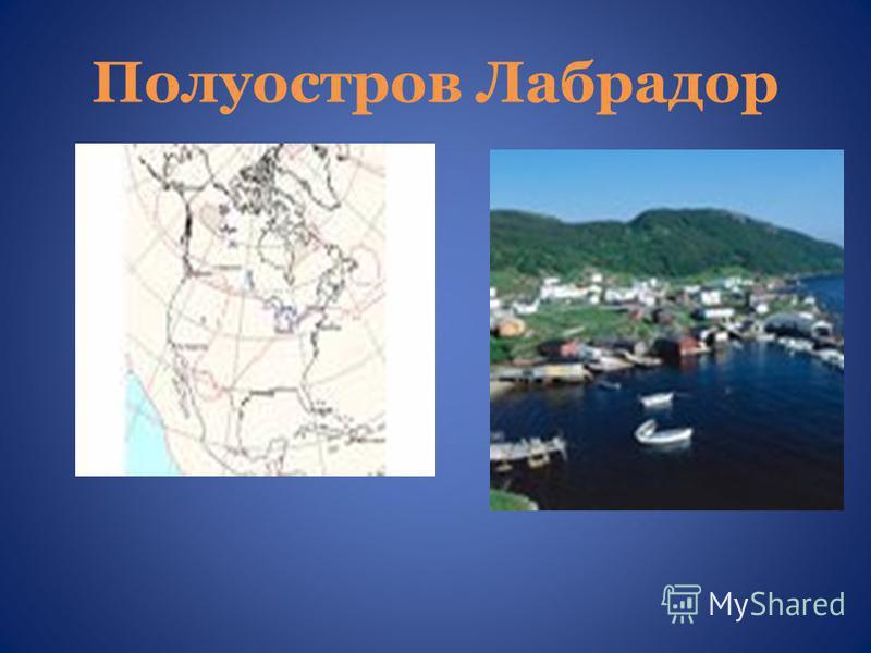 Полуостров Лабрадор