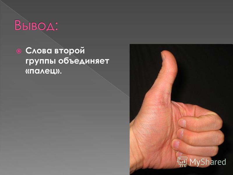 Слова второй группы объединяет «палец».
