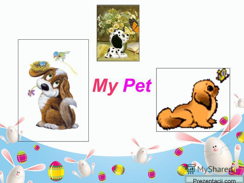 Prezentacii.com My Pet