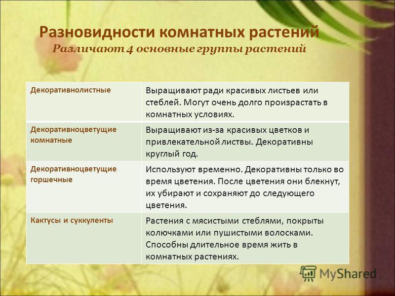 Разновидности комнатных растений Различают 4 основные группы растений Декоративнолистные Выращивают ради красивых листьев или стеблей. Могут очень долго произрастать в комнатных условиях. Декоративноцветущие комнатные Выращивают из-за красивых цветко