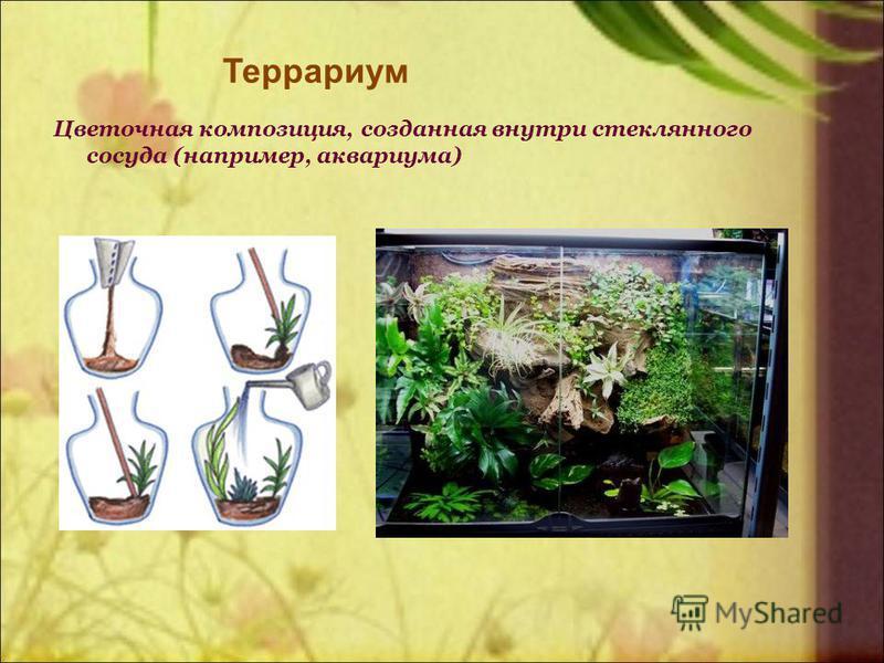 Террариум Цветочная композиция, созданная внутри стеклянного сосуда (например, аквариума)