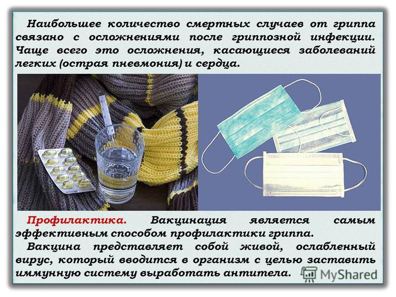 Профилактика. Вакцинация является самым эффективным способом профилактики гриппа. Вакцина представляет собой живой, ослабленный вирус, который вводится в организм с целью заставить иммунную систему выработать антитела. Наибольшее количество смертных