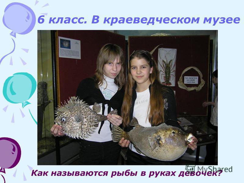 6 класс. В краеведческом музее Как называются рыбы в руках девочек?