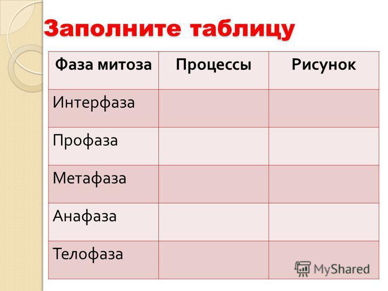 Фаза митоза ПроцессыРисунок Интерфаза Профаза Метафаза Анафаза Телофаза Заполните таблицу