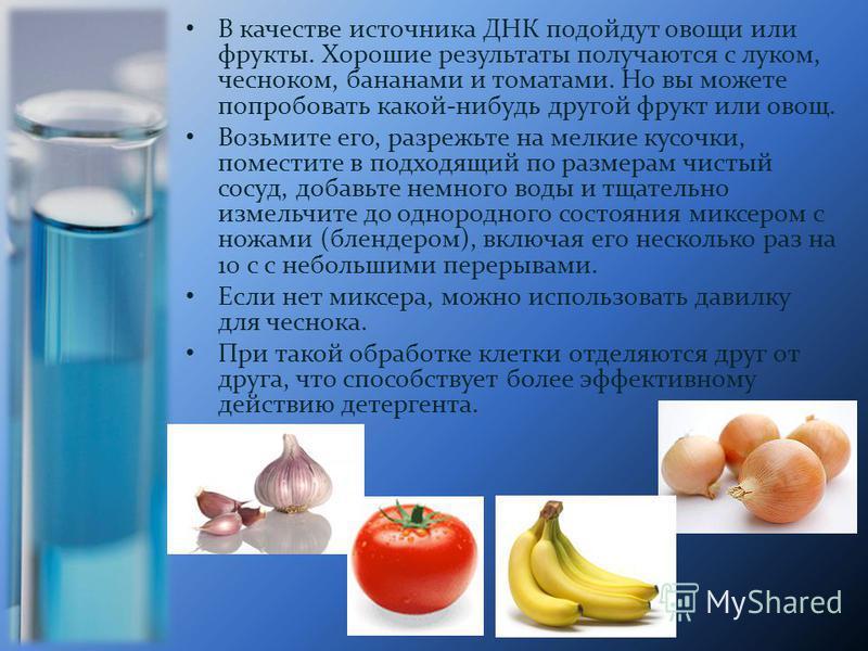 В качестве источника ДНК подойдут овощи или фрукты. Хорошие результаты получаются с луком, чесноком, бананами и томатами. Но вы можете попробовать какой-нибудь другой фрукт или овощ. Возьмите его, разрежьте на мелкие кусочки, поместите в подходящий п