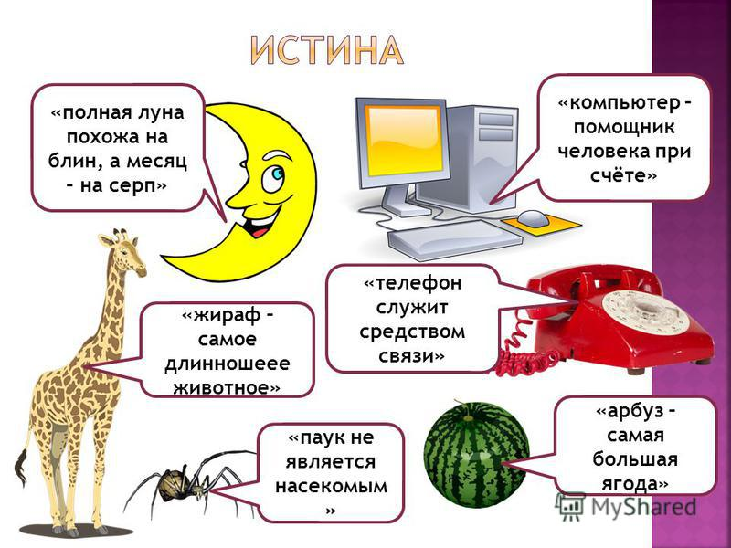«полная луна похожа на блин, а месяц – на серп» «компьютер – помощник человека при счёте» «телефон служит средством связи» «жираф – самое длинношеее животное» «арбуз – самая большая ягода» «паук не является насекомым »