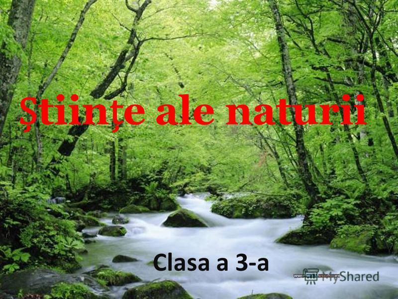 tiine ale naturii Clasa a 3-a
