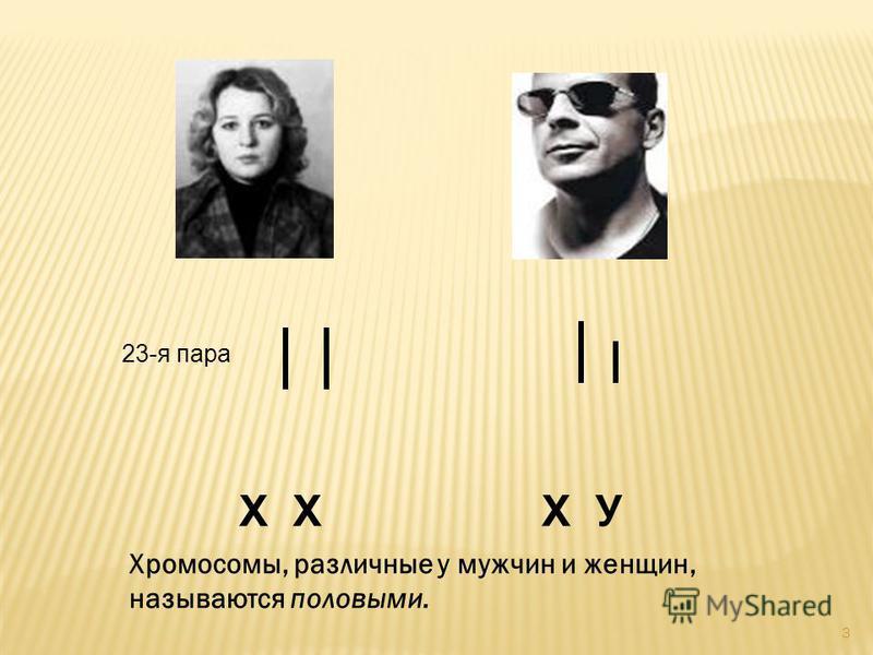 3 23-я пара Х Х У Хромосомы, различные у мужчин и женщин, называются половыми.