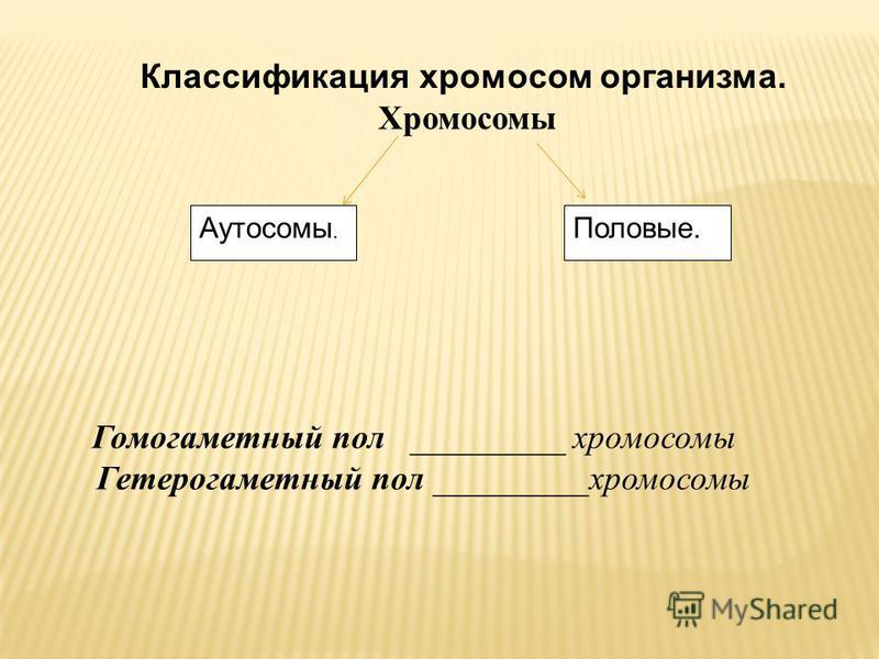 Половые.Аутосомы. Классификация хромосом организма. Хромосомы Гомогаметный пол _________ хромосомы Гетерогаметный пол _________хромосомы