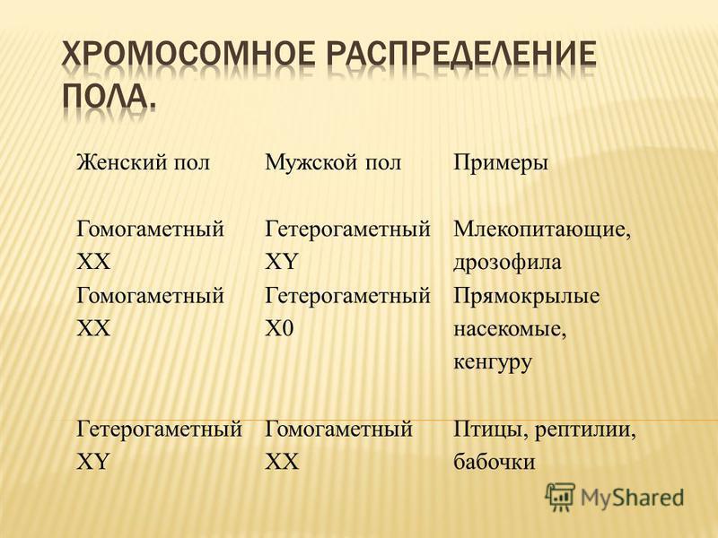 Понятие гомогаметного и гетерогаметного пола примеры