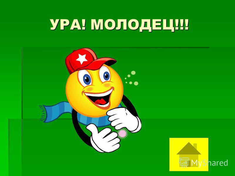 УРА! МОЛОДЕЦ!!!