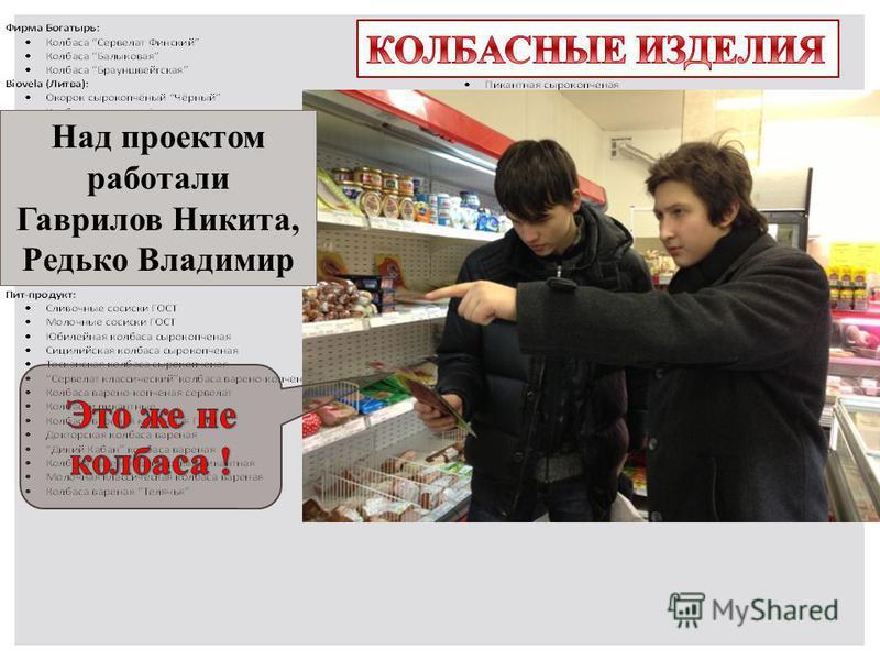 Над проектом работали Гаврилов Никита, Редько Владимир