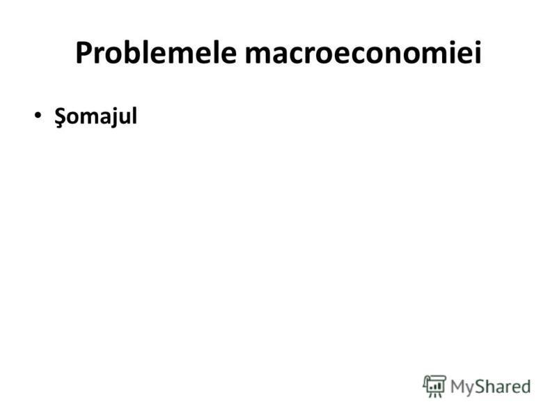 Problemele macroeconomiei Şomajul