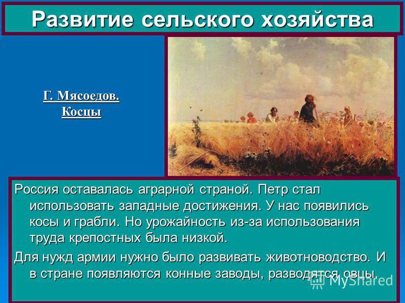 Россия оставалась аграрной страной. Петр стал использовать западные достижения. У нас появились косы и грабли. Но урожайность из-за использования труда крепостных была низкой. Для нужд армии нужно было развивать животноводство. И в стране появляются