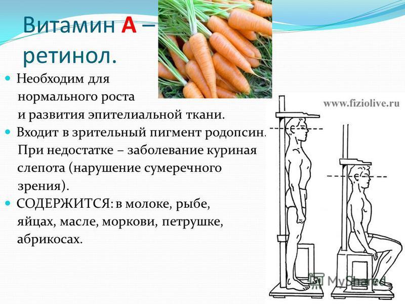 Витамин А – ретинол. Необходим для нормального роста и развития эпителиальной ткани. Входит в зрительный пигмент родопсин. При При недостатке – заболевание куриная слепота (нарушение сумеречного зрения). СОДЕРЖИТСЯ: в молоке, рыбе, яйцах, масле, морк
