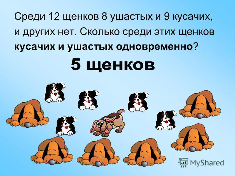Среди 12 щенков 8 ушастых и 9 кусачих, и других нет. Сколько среди этих щенков кусачих и ушастых одновременно?