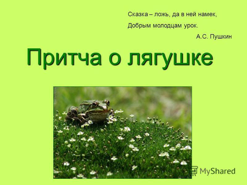 Притча о лягушке Сказка – ложь, да в ней намек, Добрым молодцам урок. А.С. Пушкин