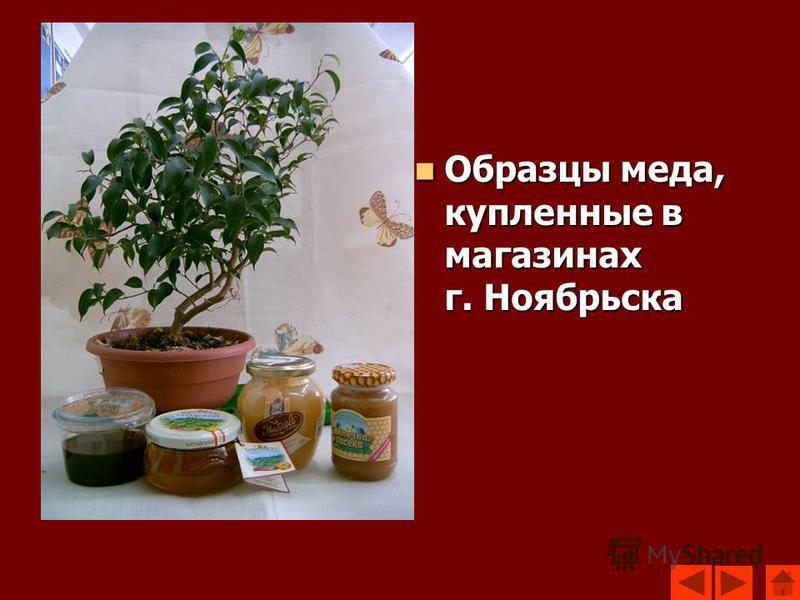 Образцы меда, купленные в магазинах г. Ноябрьска Образцы меда, купленные в магазинах г. Ноябрьска
