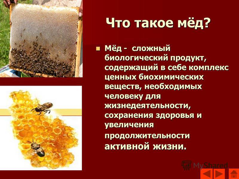 Что такое мёд? Мёд - сложный биологический продукт, содержащий в себе комплекс ценных биохимических веществ, необходимых человеку для жизнедеятельности, сохранения здоровья и увеличения продолжительности активной жизни. Мёд - сложный биологический пр