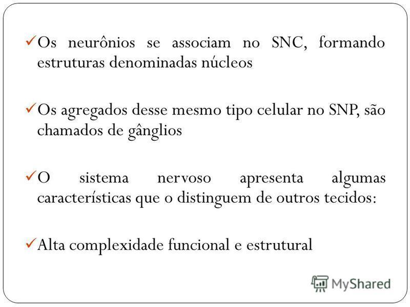 Os neurônios se associam no SNC, formando estruturas denominadas núcleos Os agregados desse mesmo tipo celular no SNP, são chamados de gânglios O sistema nervoso apresenta algumas características que o distinguem de outros tecidos: Alta complexidade