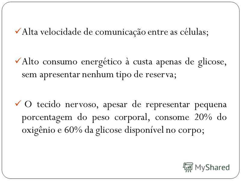 Alta velocidade de comunicação entre as células; Alto consumo energético à custa apenas de glicose, sem apresentar nenhum tipo de reserva; O tecido nervoso, apesar de representar pequena porcentagem do peso corporal, consome 20% do oxigênio e 60% da