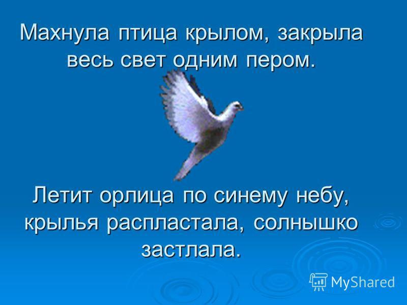 Махнула птица крылом, закрыла весь свет одним пером. Летит орлица по синему небу, крылья распластала, солнышко застлала.