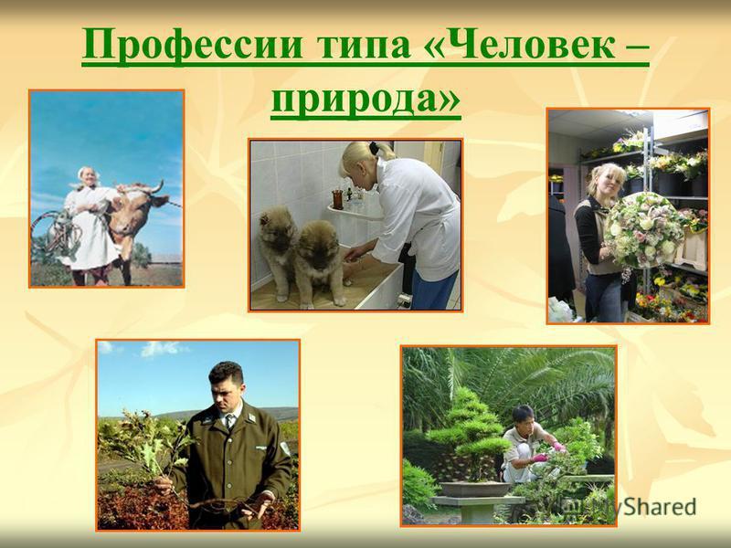 Профессии типа «Человек – природа»
