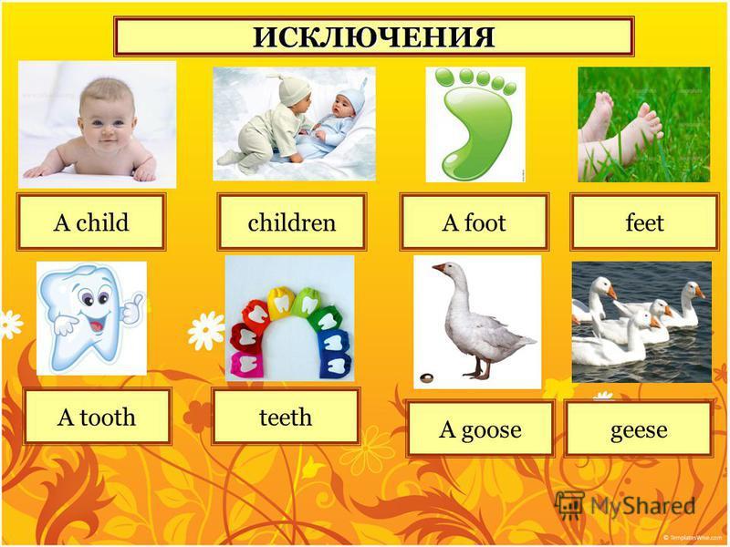 ИСКЛЮЧЕНИЯ A childchildren A toothteeth A footfeet A goosegeese