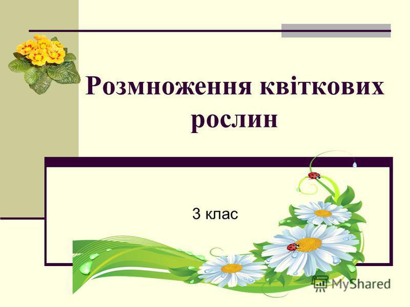 Розмноження квіткових рослин 3 клас