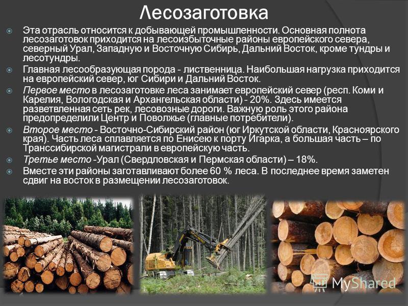 Лесозаготовка Эта отрасль относится к добывающей промышленности. Основная полнота лесозаготовок приходится на лесоизбыточные районы европейского севера, северный Урал, Западную и Восточную Сибирь, Дальний Восток, кроме тундры и лесотундры. Главная ле