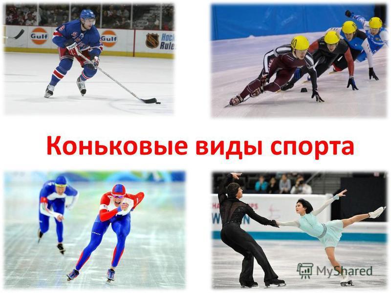 Коньковые виды спорта