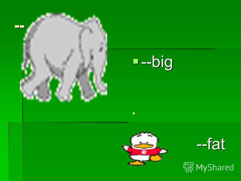 -- --big --big --fat --fat