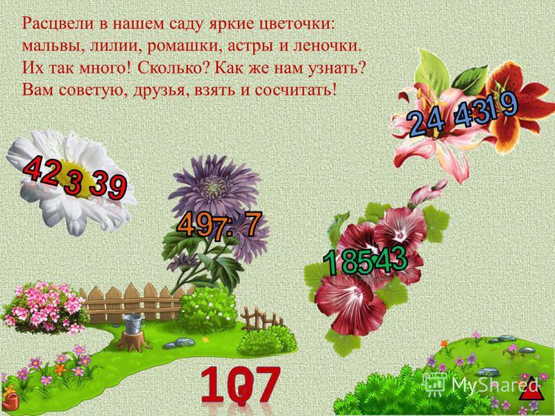 Расцвели в нашем саду яркие цветочки: мальвы, лилии, ромашки, астры и леночки. Их так много! Сколько? Как же нам узнать? Вам советую, друзья, взять и сосчитать!