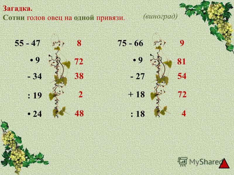 Загадка. Сотни голов овец на одной привязи. 55 - 47 9 - 34 : 19 24 8 72 38 2 48 75 - 66 9 - 27 + 18 : 18 9 81 54 72 4 (виноград)