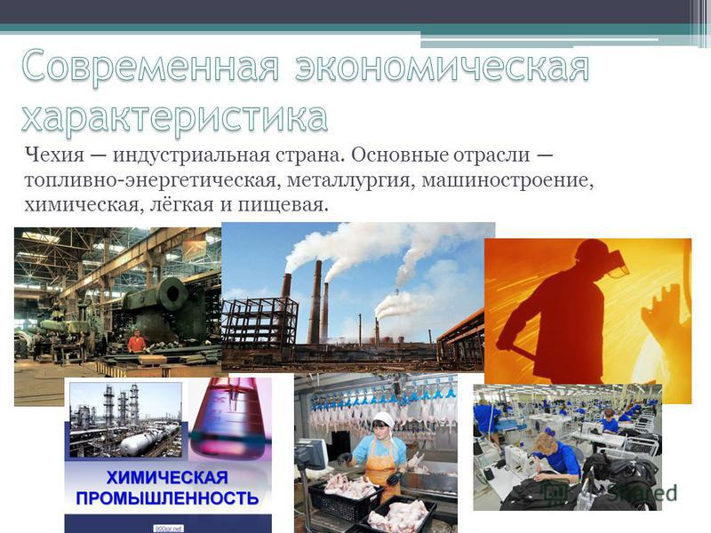 Чехия индустриальная страна. Основные отрасли топливно-энергетическая, металлургия, машиностроение, химическая, лёгкая и пищевая.