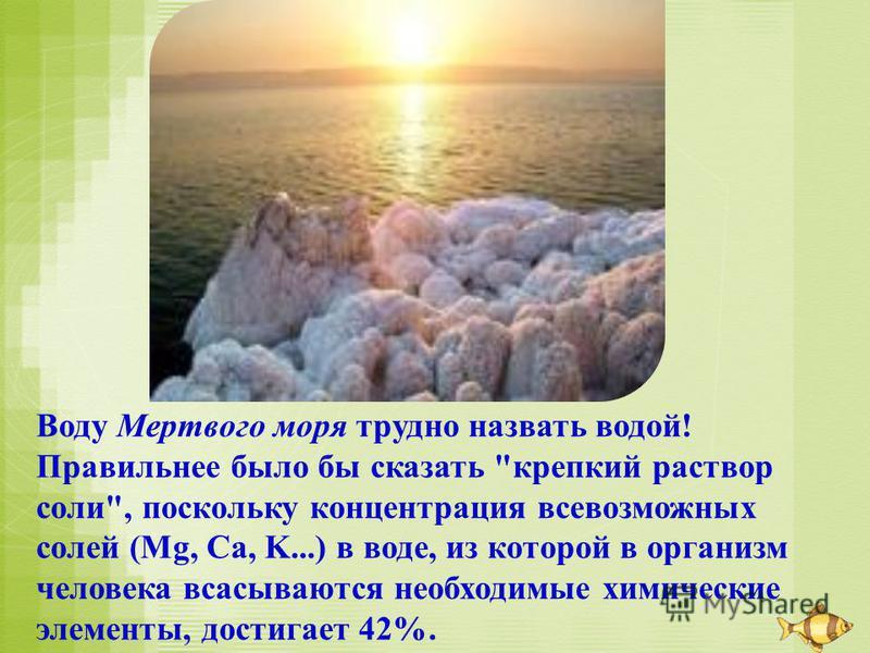 Воду Мертвого моря трудно назвать водой! Правильнее было бы сказать крепкий раствор соли, поскольку концентрация всевозможных солей (Mg, Ca, K...) в воде, из которой в организм человека всасываются необходимые химические элементы, достигает 42%.