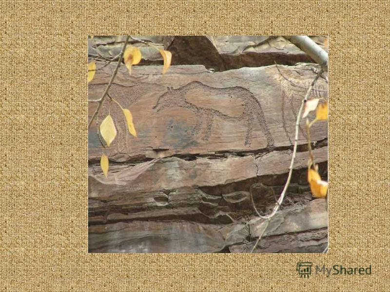 На протяжении около 2 км скального массива археологами выделено 8 мест скопления рисунков, которые расположены на различной высоте. В Шалоболинской писанице представлены многофигурные композиции с зоо- и антропоморфными образами. К эпохе неолита архе