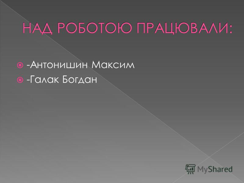 -Антонишин Максим -Галак Богдан