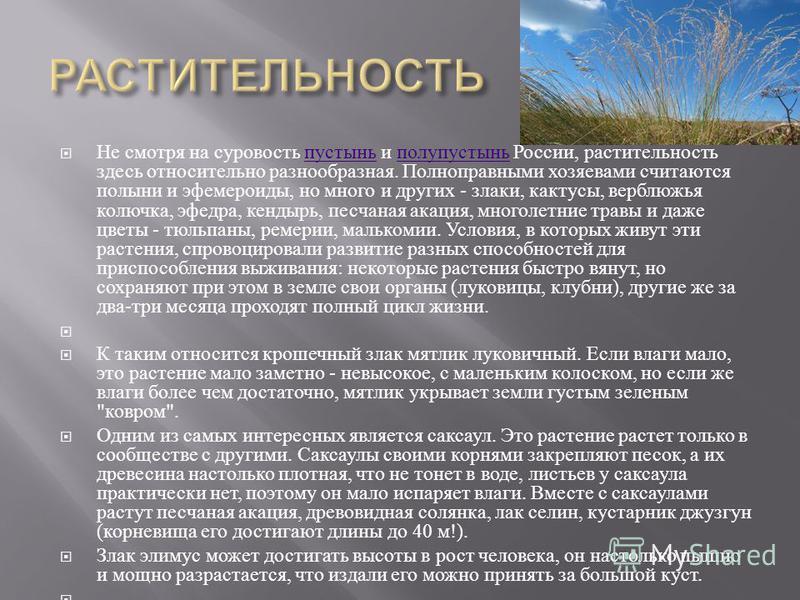 Не смотря на суровость пустынь и полупустынь России, растительность здесь относительно разнообразная. Полноправными хозяевами считаются полыни и эфемероиды, но много и других - злаки, кактусы, верблюжья колючка, эфедра, кендырь, песчаная акация, мног